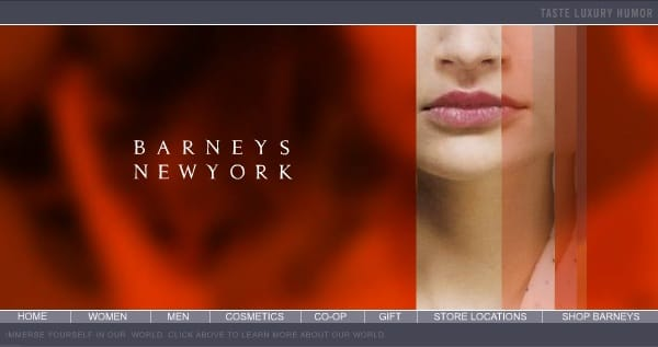 The Barneys site